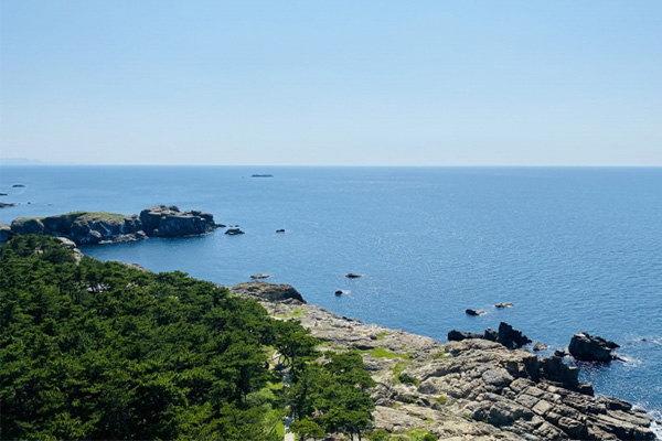 島根の釣り人から新鮮な海の幸をお届け